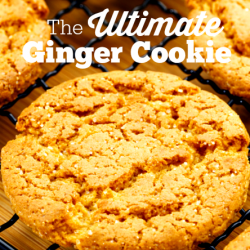 the ultimate ginger cookie