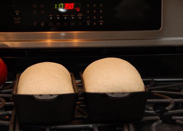 homemade whole wheat sandwich bread 17