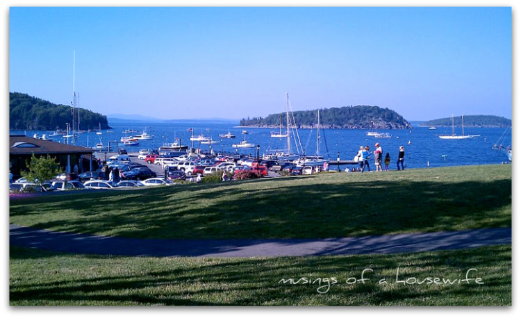 bar harbor dating Bar harbor is a hotspot for hot singles, and datewhoyouwant is the place to find them online connect with someone you like and start making dating fun again datewhoyouwant is now recognized as one of the world's leading dating companies, with a vast history of bringing interracial couples together to develop long lasting romances and strong connections.