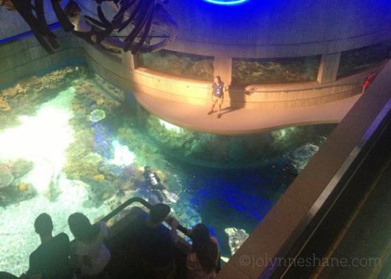 national-aquarium