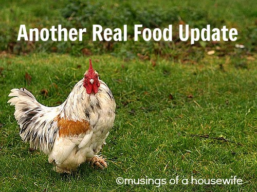 another real food update