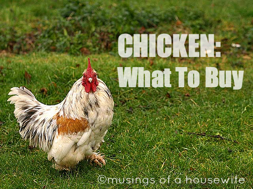 chicken-what-to-buy