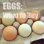 Eggs: What to Buy {Deciphering the Lingo}