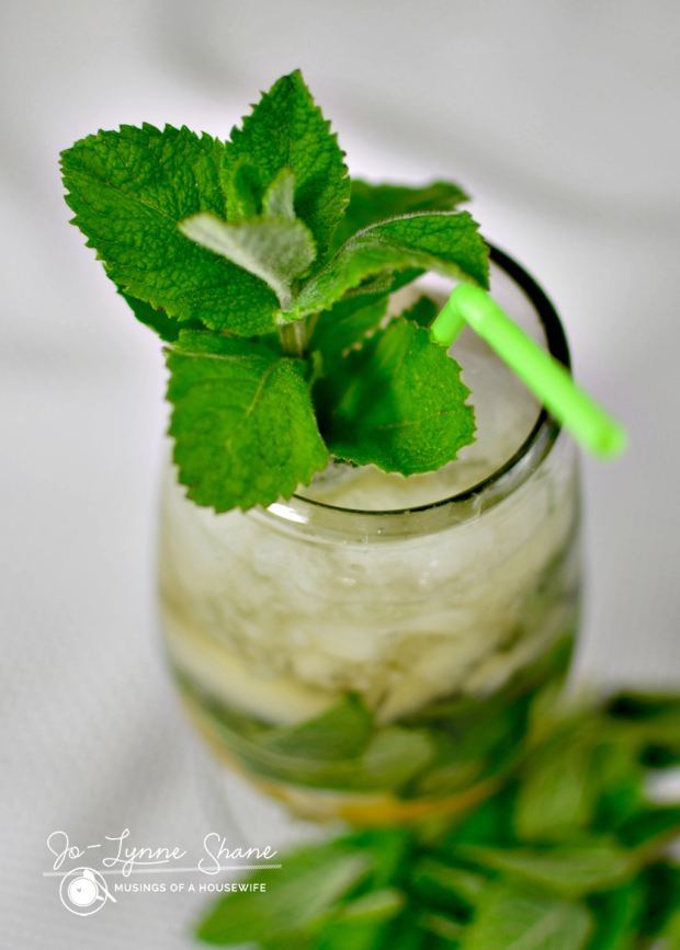 mint-julep-straw